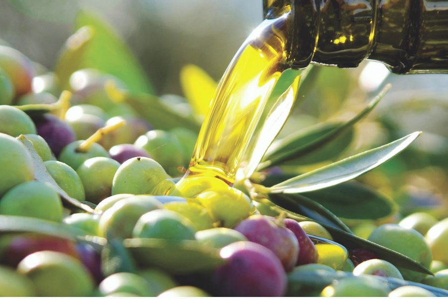 L'olive, un trésor consommé depuis le Néolithique